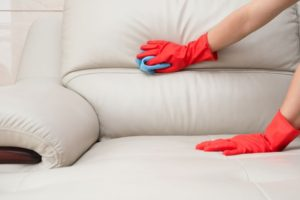 carpet cleaning ipswich ma area